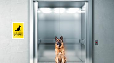 Animale domestico e vita condominiale