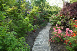 In crescita la richiesta di case con giardino